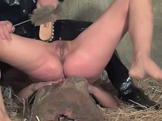 Bdsm Farm Insertion Farm Insertion Bdsm