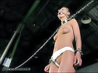 Bdsm Slave Teen Young Whip Bdsm Slave Submissive Slave Teen Bus + Teen