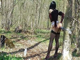 Shemale Forest Tranny