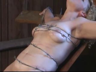 Bdsm Bondage Pain Tied